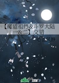 【魔道祖师&斗罗大陆一&二】交错 幻北殇