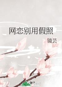 [综]网恋别用假照