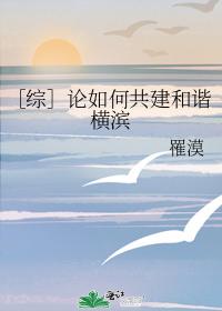 [综]论如何共建和谐横滨