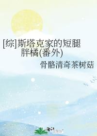 [综]斯塔克家的短腿胖橘(番外)