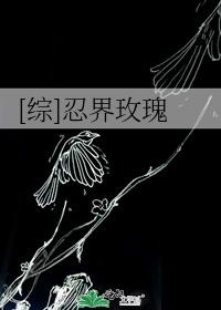 [综]忍界玫瑰
