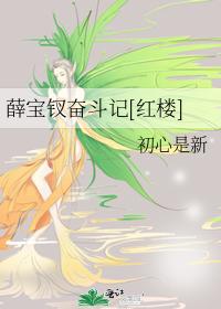 薛宝钗奋斗记[红楼]
