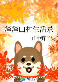 泽泽山村生活录