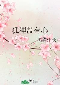 Image result for 狐狸没有心小说黑猫州长