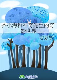 齊小海和神奇先生的奇妙世界