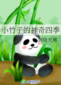 小竹子的神奇四季