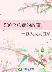 500个总裁的故事